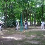 なので森林浴練習!