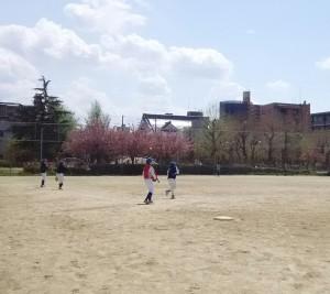 この日は平野公園で、