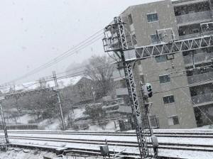 季節はずれの雪だったそうです。